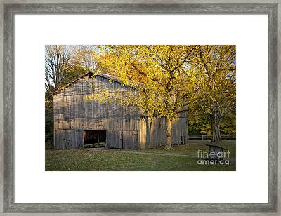 Old Tobacco Barn Framed Print by Brian Jannsen