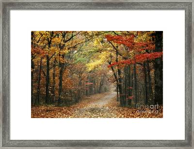 Old Trace Fall - Along The Natchez Trace In Tennessee Framed Print by T Lowry Wilson