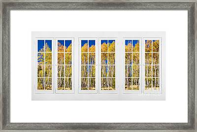 Old Triple16 Pane White Window Colorful Autumn Aspen Forest View Framed Print by James BO  Insogna