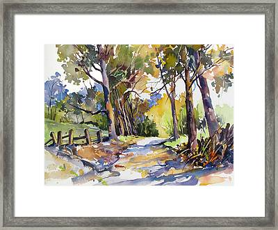 Olinda Trees Maui Framed Print by Rae Andrews
