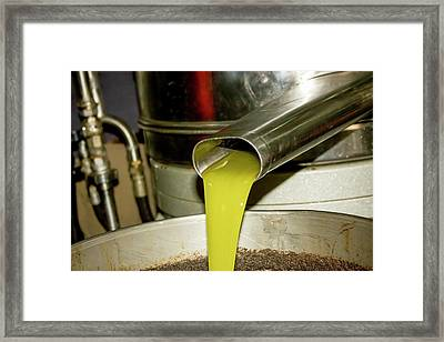 Olive Oil Press Framed Print by Photostock-israel