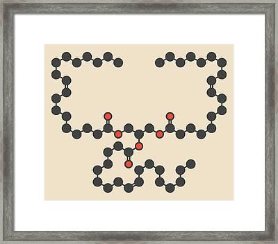 Olive Oil Triglyceride Molecule Framed Print by Molekuul