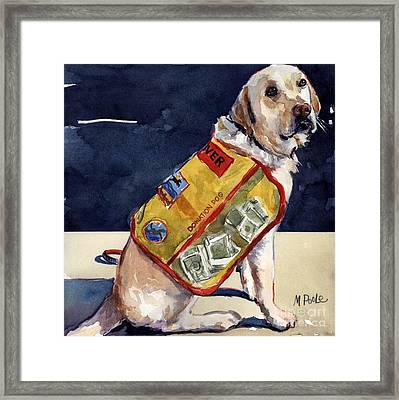 Oliver Rocks The Vest Framed Print by Molly Poole