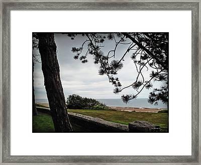 Omaha Beach Under Trees Framed Print by Joan  Minchak
