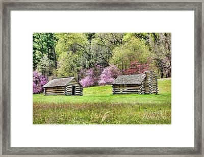 On A Hill At Valley Forge Framed Print by Olivier Le Queinec