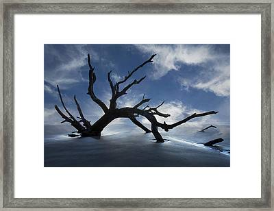 On A Misty Morning Framed Print by Debra and Dave Vanderlaan