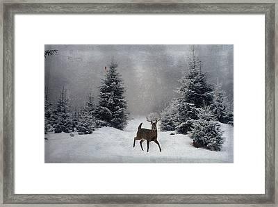 On A Snowy Evening Framed Print by Lianne Schneider