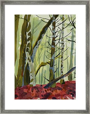 On Ivy Hill Framed Print by Alexandra Schaefers