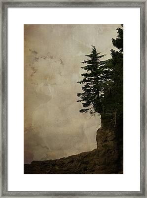 On The Edge Framed Print by Marilyn Wilson