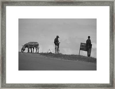 On The Edge Of The World  Framed Print by Jeanette Brown