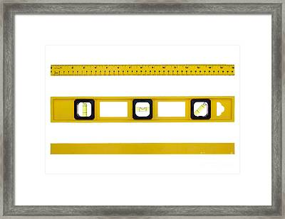On The Level Framed Print by Olivier Le Queinec