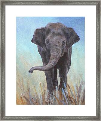 On The Move Framed Print by Margaret Saheed