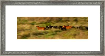 On The Move Framed Print by Nathaniel Kidd