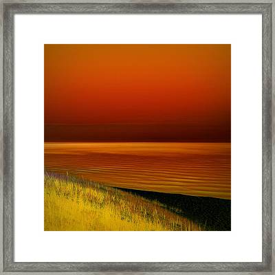 On The Shore Framed Print by Michelle Calkins