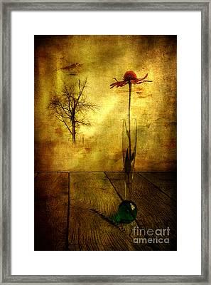 On The Table Framed Print by Veikko Suikkanen
