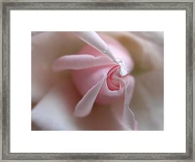 On The Verge Framed Print by Juergen Roth