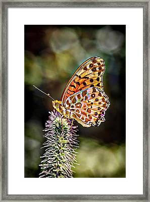 On The Wings Of A Butterfly... Framed Print by Lilia D