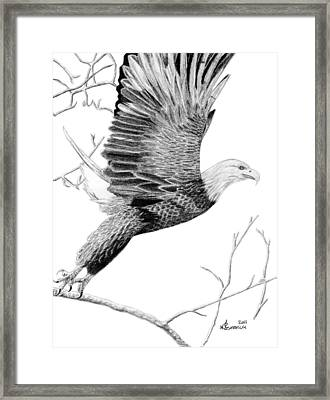 On The Wings Of Eagles Framed Print by Kayleigh Semeniuk