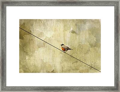 On The Wire Framed Print by Rebecca Cozart