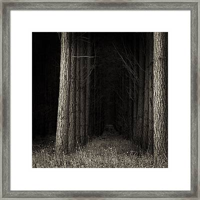 Once Upon A Time Framed Print by Tim Nichols