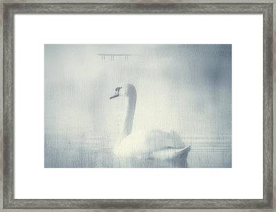 One Beautiful Moment Framed Print by Georgiana Romanovna