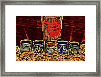 One Classy Nut Framed Print by Benjamin Yeager