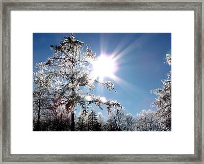 One Enchanted Morning Framed Print by Gail Matthews