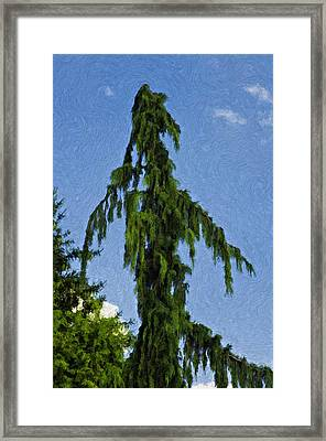 One Mean Tree Impasto Framed Print by Steve Harrington