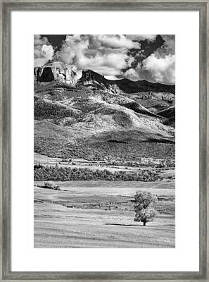 One Stands Alone Framed Print by Jon Glaser