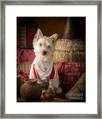 One Thousand And One Nights Framed Print by Edward Fielding