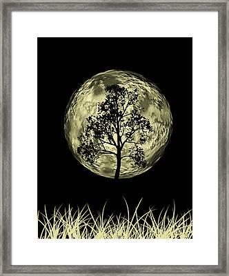 One Tree  Framed Print by Mark Ashkenazi