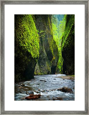 Oneonta River Gorge Framed Print by Inge Johnsson