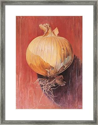 Onion Framed Print by Hans Droog