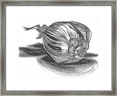 Onion Framed Print by Lucy Loo Wales