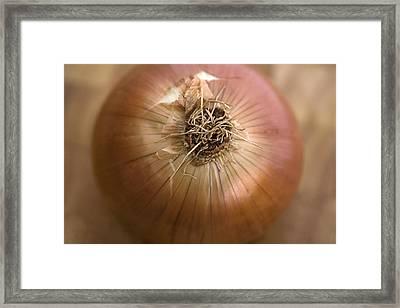 Onion Framed Print by Natalie Kinnear
