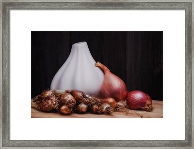 Onions Framed Print by Tom Mc Nemar