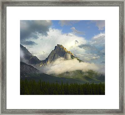 Opal Range In Fog Kananaskis Country Framed Print by Tim Fitzharris