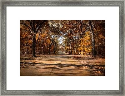 Open For Beauty Framed Print by Jai Johnson