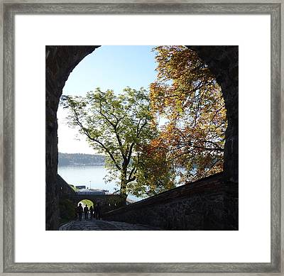See The Nature Through The Open Gate  Framed Print by Hilde Widerberg