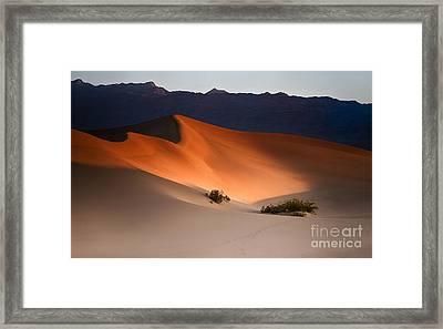 Orange Crush Framed Print by Jennifer Magallon