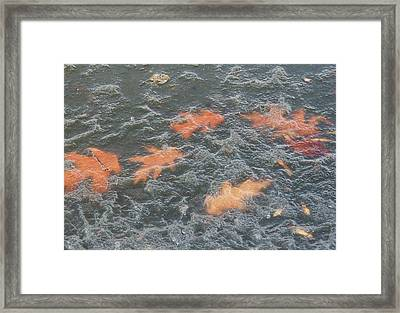Orange Ice Framed Print by Todd Sherlock