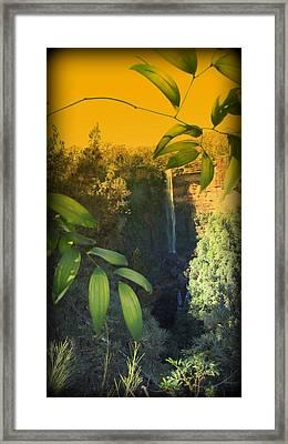 Orange Leaf Trimmed Framed Print by Henry Adams
