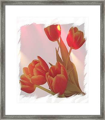 Orange Light Framed Print by Debra  Miller