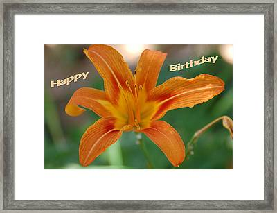 Orange Lily Birthday 1 Framed Print by Aimee L Maher Photography and Art Visit ALMGallerydotcom