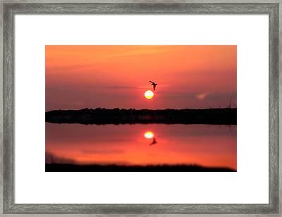Orange Mood Framed Print by Mark Ashkenazi