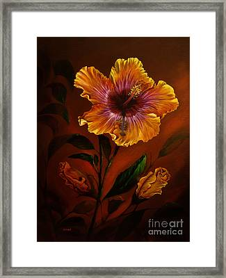 Orange Painted Hibiscus Framed Print by Zina Stromberg