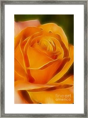 Orange Rose 6291-fractal Framed Print by Gary Gingrich Galleries