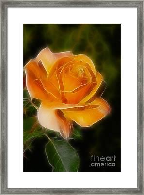 Orange Rose 6292-fractal Framed Print by Gary Gingrich Galleries