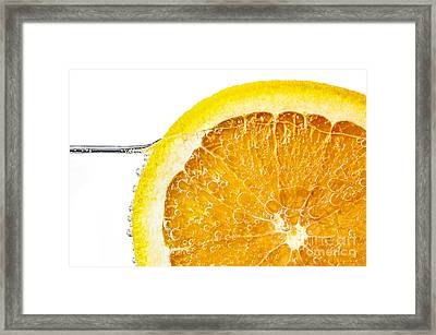 Orange Slice In Water Framed Print by Elena Elisseeva