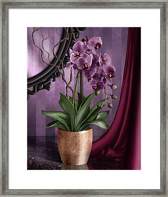 Orchid I Framed Print by April Moen